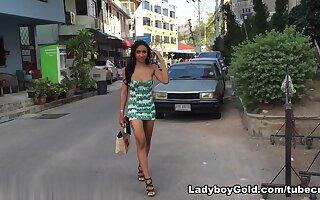LadyboyGold Video: Miniskirt and Big Bareback...